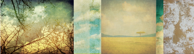 branch out header_Headers